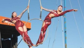 circus stella