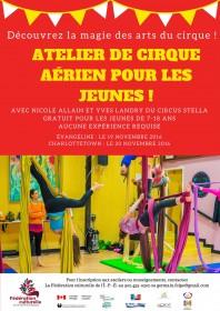 cirque-aerien01
